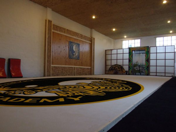 Canvas Dojo Floor